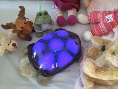 tartaruga bcloud